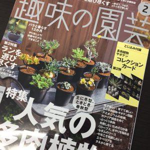 趣味の園芸2月号