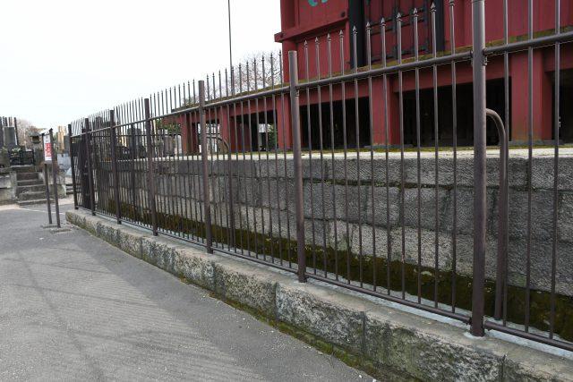 柵の向こうホンモンジゴケ