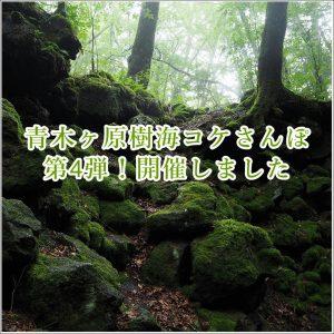 青木ヶ原樹海コケさんぽ