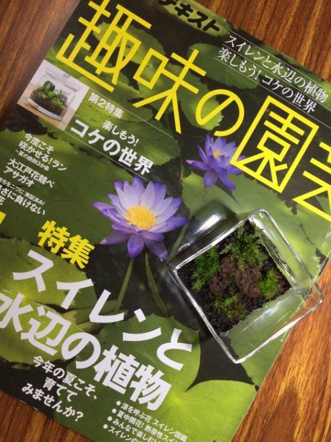 趣味の園芸8月号