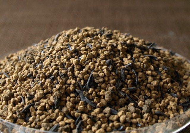 苔テラリウム用SOIL